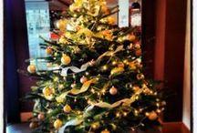 Ho, ho, ho!! Christmas flowers / Tis the season to be jolly....tra la la la lah...