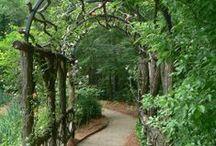 Woodland&shade