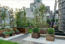 Garden&City&Architecture