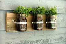 Gardening ideas DIY