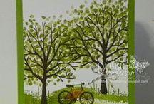 stromy JARO