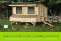 Chicken Coop Designs / Chicken Coops and Chicken Tractors by North Country Sheds. Visit NorthCountrySheds.com for more information and pricing.