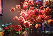 De mooiste zijden bloemen van freshsilk.nl / Wilt u uw werkplek opvrolijken? Neem dan contact met ons op. Wij kunnen naar uw eigen wensen en behoefte een mooi zijde boeket samenstellen. Wij hebben eventueel ook vazen.