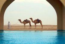 Arabian Lifestyle نمط الحياة العربية / Beautiful Elegent worldwide arabian cultural pictures hope you like it :) / by Guzel✯AbdulQadir ☪Islam-Peace ☪