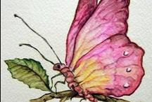 Butterflies / by Beverly Geller