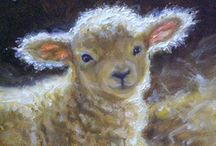 Lambs & Sheep / by Beverly Geller