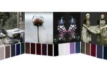 Colour Cards / ricerca, stagionalità, tendenze, nuances