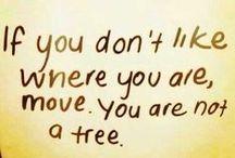 Quotes >**< motivation /determination
