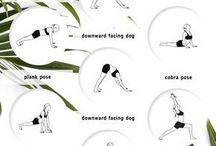 // Fitness & Yoga //