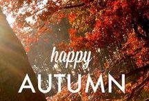 Toamna / Autumn / Toamna isi asterne frumusetea culorilor la picioarele noastre.