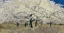 Klimt / obrazy krajiny