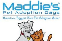 2014 - Maddie's Pet Adoption Days