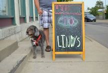 Lindy's Pals / Is your pet a fan of Lindy's Pet Treats? Upload or send us a photo at OstingD@daybreakdayton.org to contribute to our gallery!