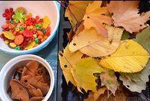 Preschool explorations of/with natural materials or loose parts