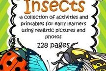 Insects and Spiders Preschool and PreK Themes / This is a collection of Insects and Spiders themed resources for your preschool, pre-K and Kindergarten aged children, to use both at school and at home. Make hands-on, interactive learning games and activities with these creative free, and low-cost printable pages about all kinds of insects and spiders. Included are butterflies, bees, ladybugs, caterpillars, dragonflies, grasshoppers, crickets, tarantulas, Itsy Bitsy spiders, and many more...
