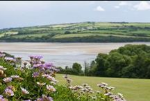 The Orchard - a self-catering holiday cottage in Rock, North Cornwall by Latitude50. / Positioned like an eagle's nest to maximise its views, The Orchard enjoys spectacular estuary views across the water towards the Camel Trail on the other side of the Camel Estuary.