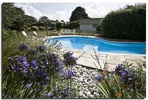 Half Way Tree - a self-catering holiday cottage in Rock, North Cornwall by Latitude50. / Half Way Tree sits within a quiet area of Rock and has an outdoor heated swimming pool surrounded by a beautiful private garden.  Find out more here: https://www.latitude50.co.uk/explore-our-properties/north-cornwall/rock/half-way-tree