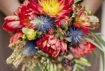 Design   Garden / Design inspiration for celebrating the joys of gardening / by Fresh Bunch