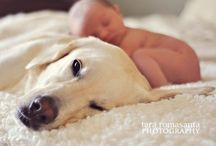 Photo ideas / Smile  / by Alexandra Denicourt