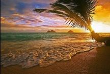 Hawaiian Islands / by Marlene McCormick