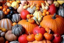 Holiday | Thanksgiving / Thanksgiving design inspiration