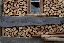 wood. woods & forrest