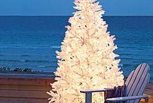 Christmas / by Joy Bass