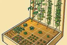 Tuinieren