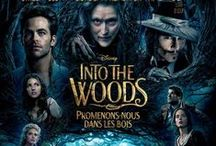 Into The Woods / A witch tasks a childless baker and his wife with procuring magical items from classic fairy tales to reverse the curse put on their family tree.