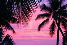 summer / #summer #summervibes #beach #clothes #sun #sunnyday #palms #holiday