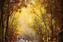 VIAGENS / Paises, cidades, casas, parques, ruas, montanhas... Qualquer lugar que vale a pena conhecer...
