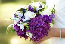 Bridal Bouquets and Other Floral / Ideas for bouquets, boutonnieres, and decorative floral for your big day!