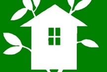 Go Green in Your Home / Need Tips on saving money and helping the environment with home purchases?
