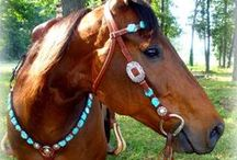 For•The•Hoof•Beats / What beautiful creatures God has made.... Horses can show grace and friendship like no other... / by ✨Amy Bean Weaver✨