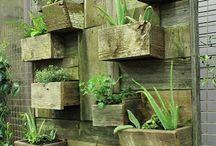 Green life / Nature & Garden