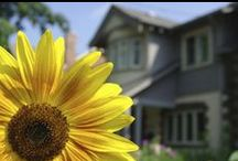 Selling a Home / Advice for selling your home--- from showings to open houses!