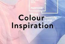 Mous Colour Inspiration / Colour - Inspiration - Design - Ideas - Aesthetic - iPhone