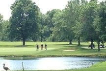 Big Brothers Big Sisters Charity Golf Outing / Ou0027Brien Mitsubishi Of Normal  Sponsored The