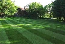 Lawn / Call me crazy, but there's something about a fresh mowed lawn with nice straight lines and that fresh cut grass smell that makes me happy :) / by Brady Fisher
