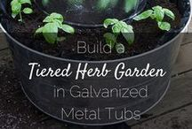 In the Garden / Organic gardening tips for purple thumb newbies like myself!