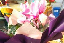 My work, portfolio / My floristry training & progress.