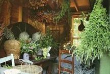Homes to love / Homes and details