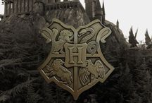 Harry Freaking Potter / Hogwarts: A History / by Bridget Bailey