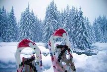 Go Snowshoeing / The items you need while snowshoeing, and some just because they're cute.