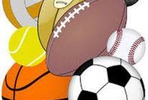 SPORT IN DIRETTA / Rassegna delle notizie sportive pubblicate sui portali www.bisceglieindiretta.it e www.molfettaindiretta.it