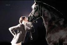 Portrait couples cavalier cheval
