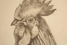 PENCIL / Drawings