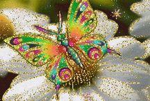 Butterflies ( Kelebekler)
