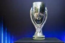 Club Atlético de Madrid S.A.D. 2012/13