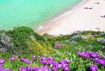 Sardinia / Travel inspirations